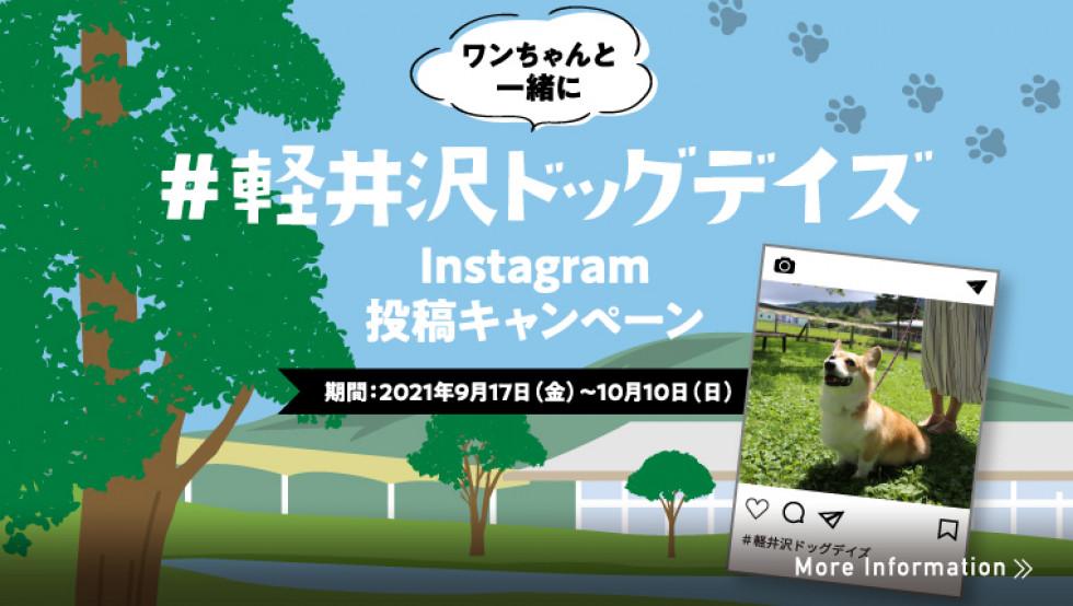 ドッグデイズinstagram投稿キャンペーン